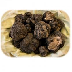 Truffes Noires Origine garantie France qualité EXTRA